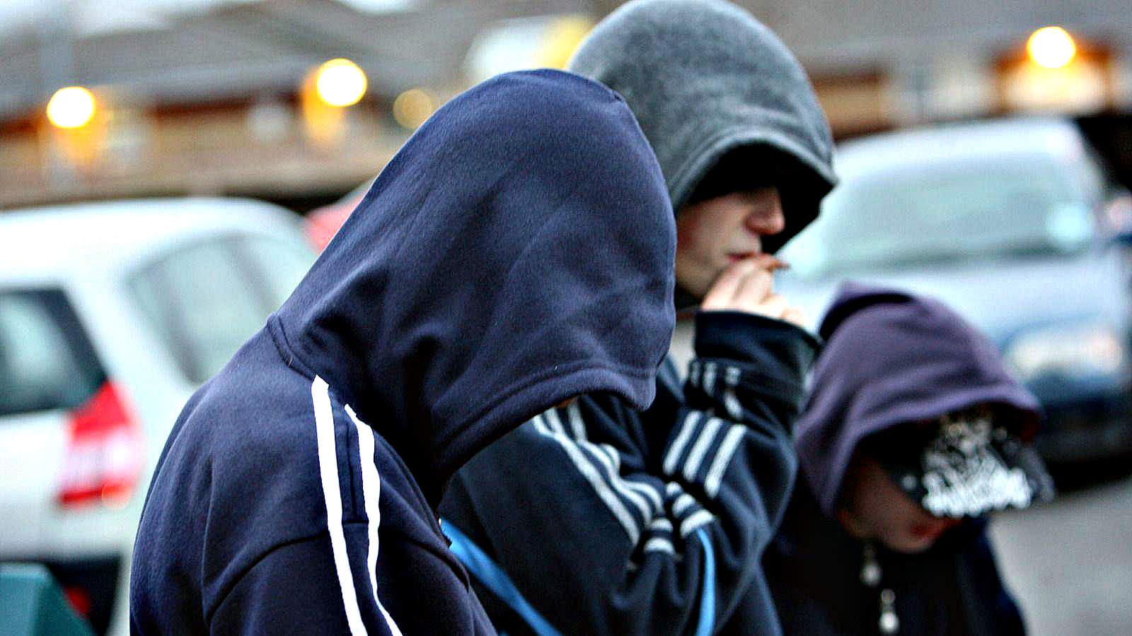 Под Волгоградом поймали банду воров, которую возглавлял 16-летний подросток