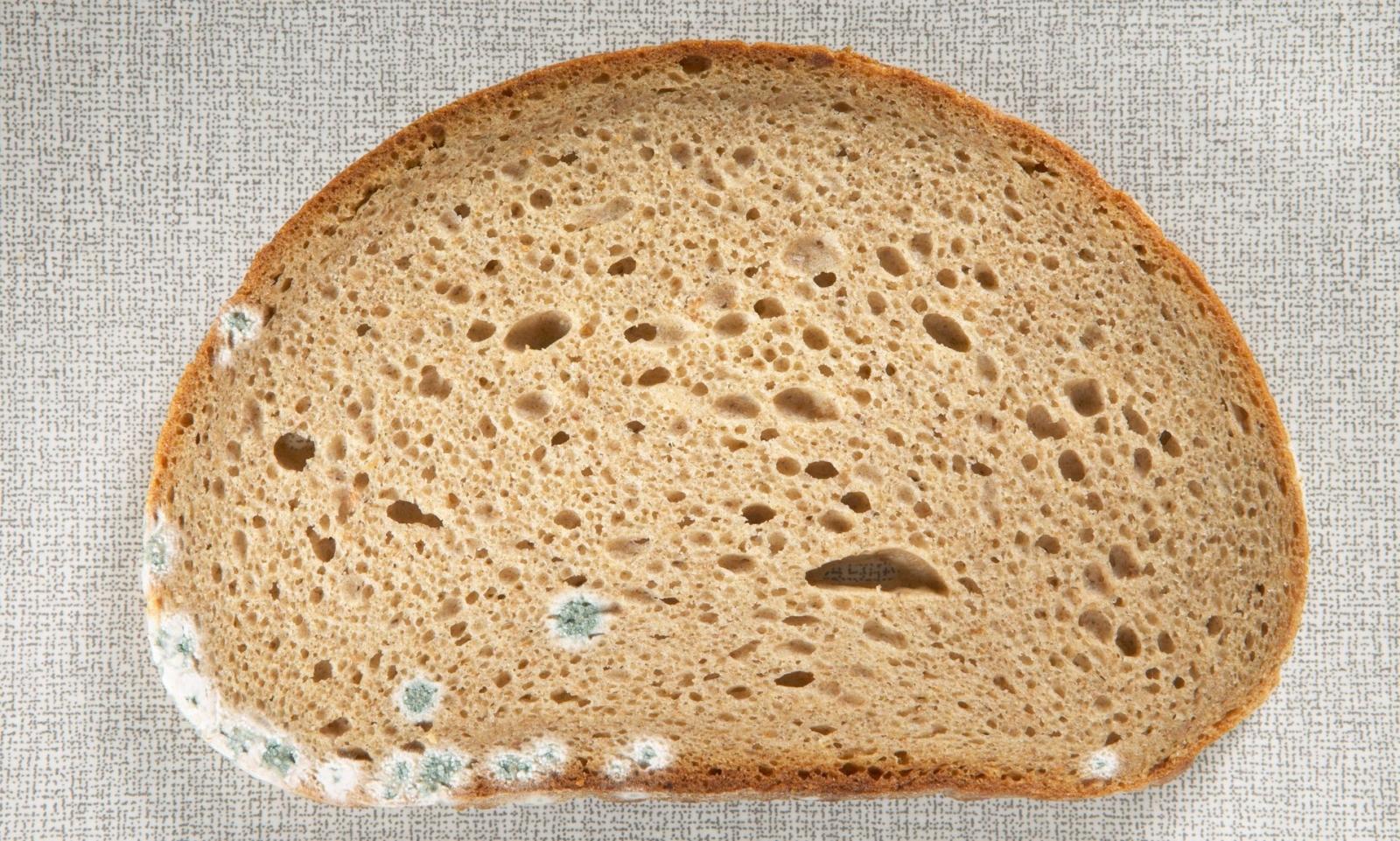 Что произойдет, если съесть хлеб с плесенью?