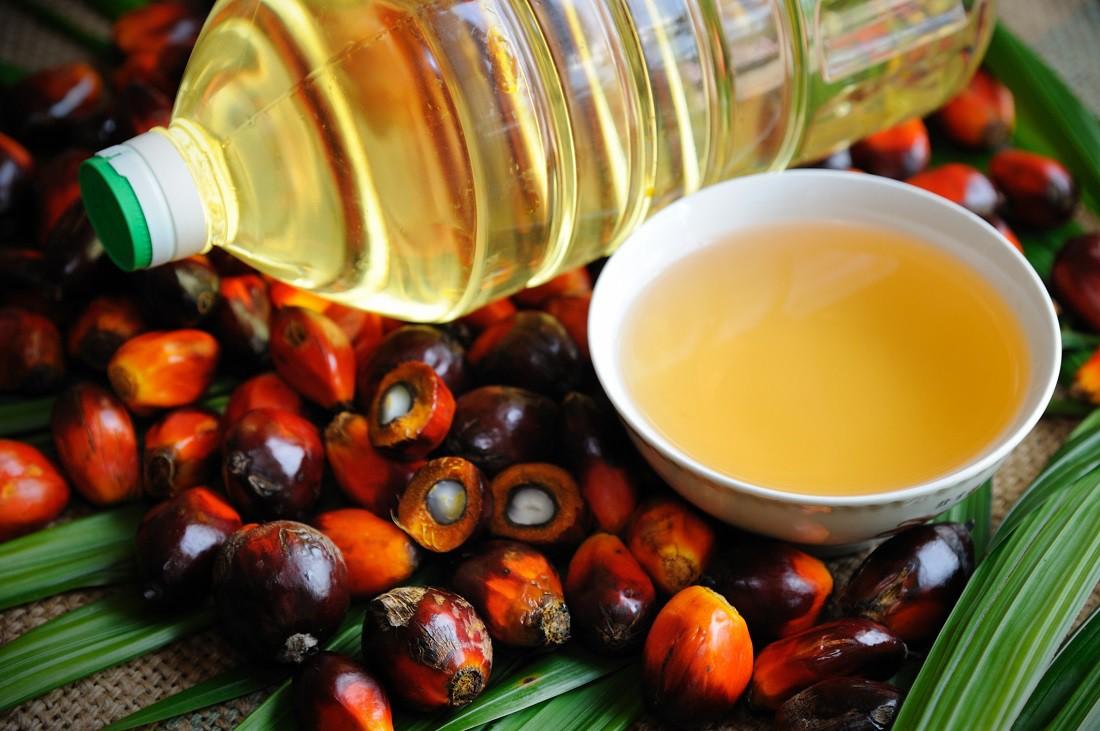 Что такое пальмовое масло и из чего его делают?