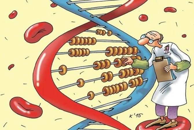 Лекарство от старости: Почему в России выросло число долгожителей?