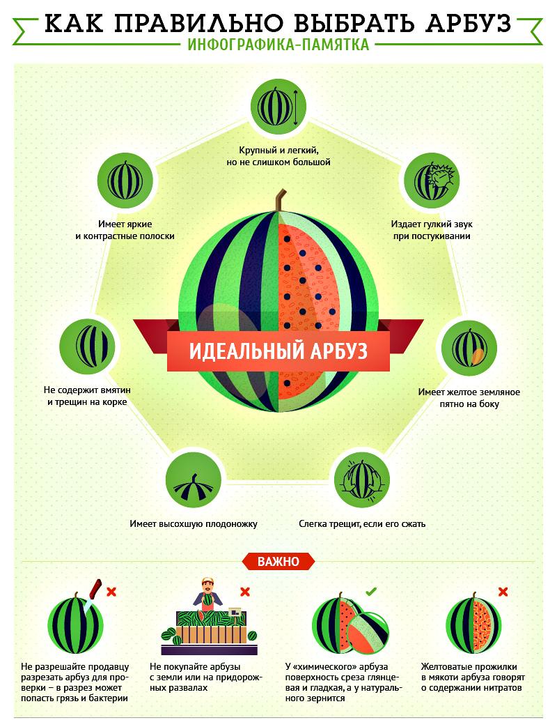 Полосатая смерть: К каким болезням может приводить арбуз?